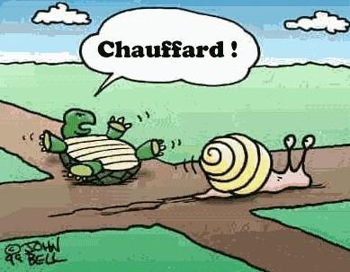 Chauffard - Voiture tortue ...