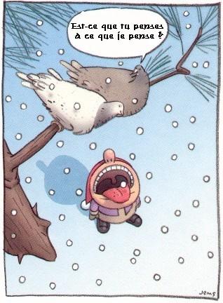 Attraper des flocons de neiges !