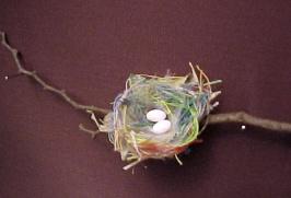 nid du colibri-abeille